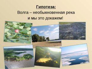 Гипотеза: Волга – необыкновенная река и мы это докажем!