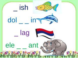 _ ish dol _ _ in _ lag ele _ _ ant