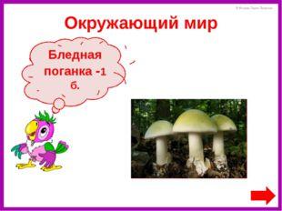 Кто написал сказку «Федорино горе»? К. И. Чуковский - 2 б. Литературное чтени