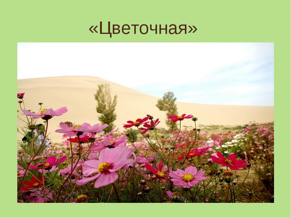 «Цветочная»