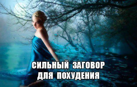 hello_html_9609524.jpg