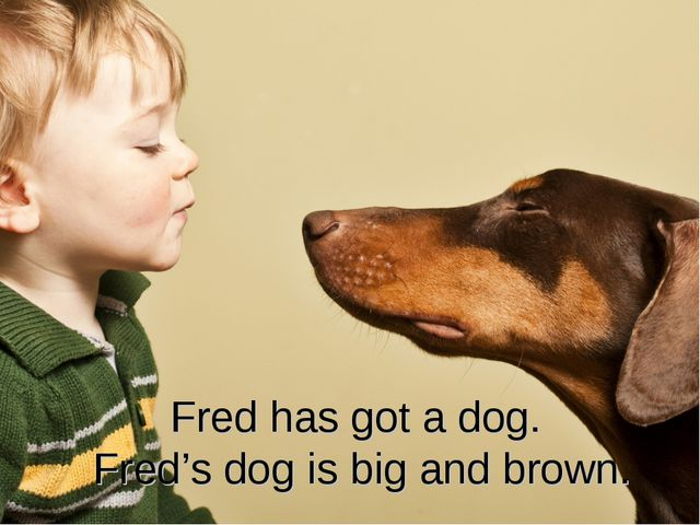 Fred has got a dog. Fred's dog is big and brown.