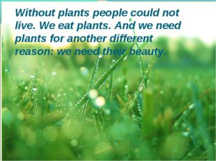 Without plants people could not live. We eat plants. And we need plants for a