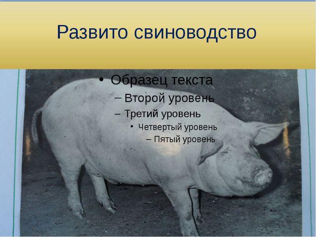 Развито свиноводство