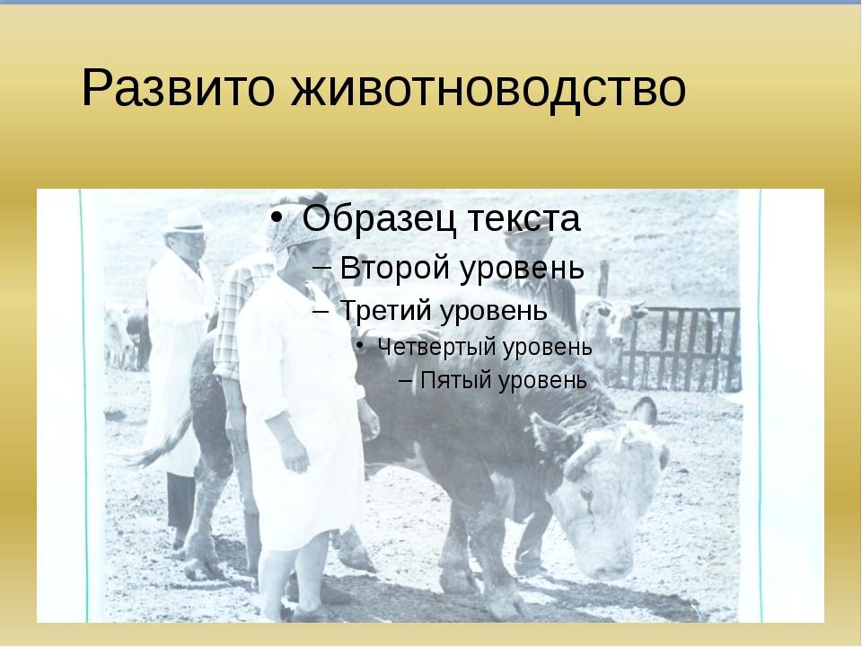 Развито животноводство