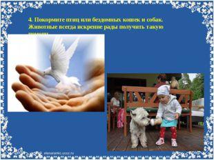 4. Покормите птиц или бездомных кошек и собак. Животные всегда искренне рады