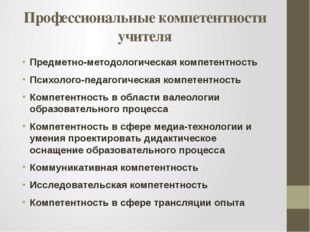 Профессиональные компетентности учителя Предметно-методологическая компетентн