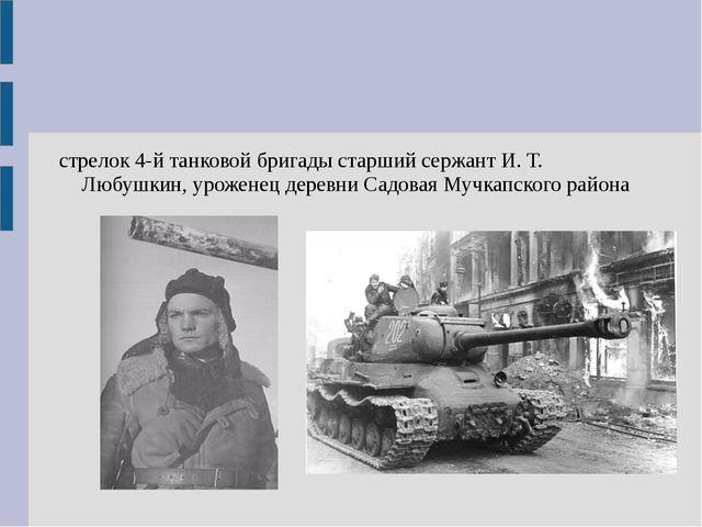стрелок 4-й танковой бригады старший сержант И. Т. Любушкин, уроженец деревни...