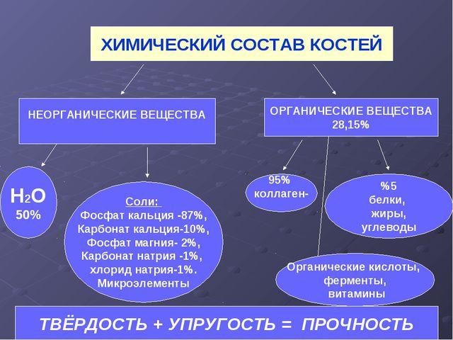 ХИМИЧЕСКИЙ СОСТАВ КОСТЕЙ НЕОРГАНИЧЕСКИЕ ВЕЩЕСТВА ОРГАНИЧЕСКИЕ ВЕЩЕСТВА 28,15%...