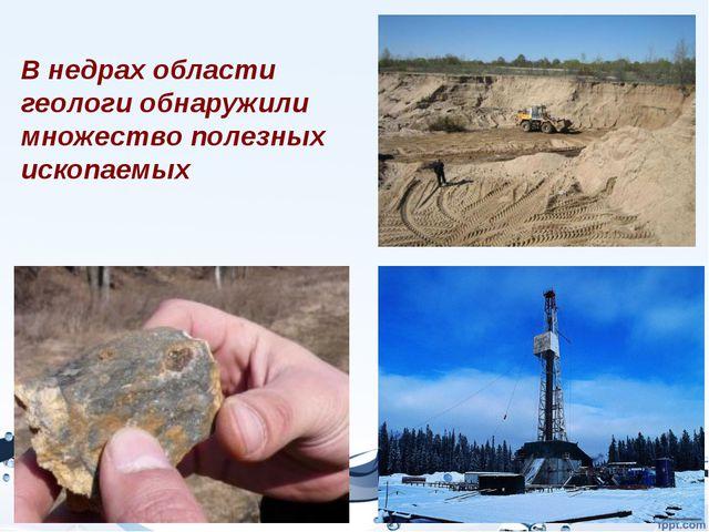 В недрах области геологи обнаружили множество полезных ископаемых