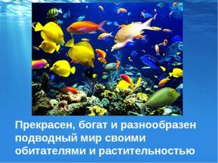 Прекрасен, богат и разнообразен подводный мир своими обитателями и растительн