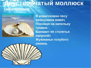 Двустворчатый моллюск (жемчужина) В коралловом лесу жемчужина живёт, Похожая