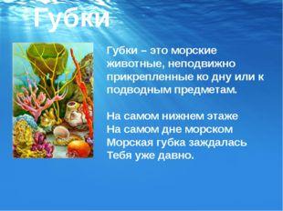 Губки – это морские животные, неподвижно прикрепленные ко дну или к подводным