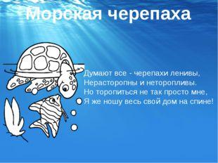 Думают все - черепахи ленивы, Нерасторопны и неторопливы. Но торопиться не та
