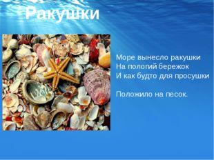 Ракушки Море вынесло ракушки На пологий бережок И как будто для просушки Поло