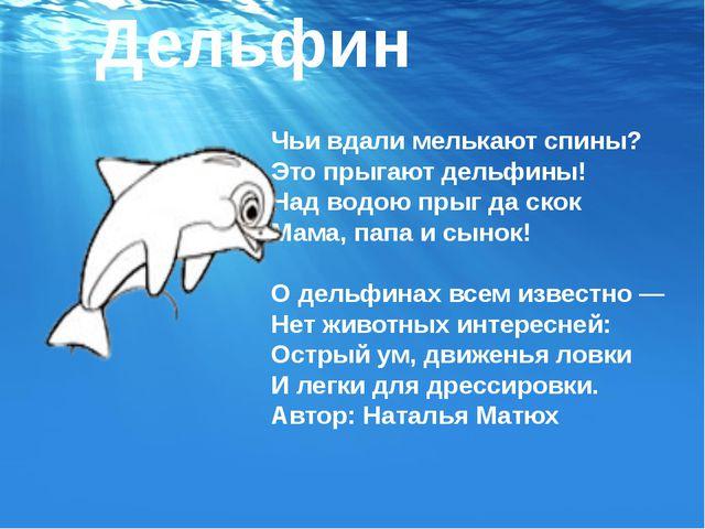 Дельфин Чьи вдали мелькают спины? Это прыгают дельфины! Над водою прыг да ско...
