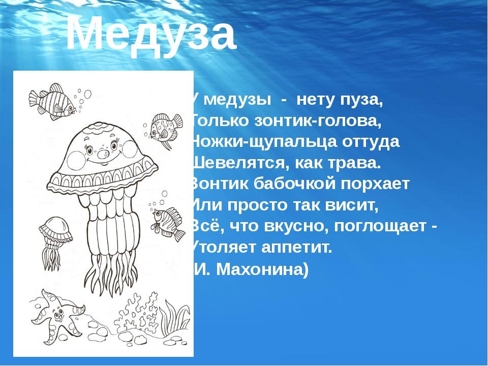 Медуза У медузы-нету пуза, Только зонтик-голова, Ножки-щупальца оттуда Ше...