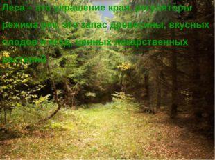 Леса – это украшение края, регуляторы режима рек, это запас древесины, вкусны