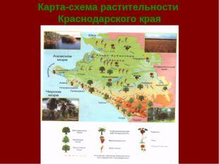Карта-схема растительности Краснодарского края