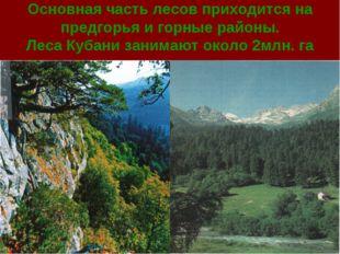 Основная часть лесов приходится на предгорья и горные районы. Леса Кубани зан