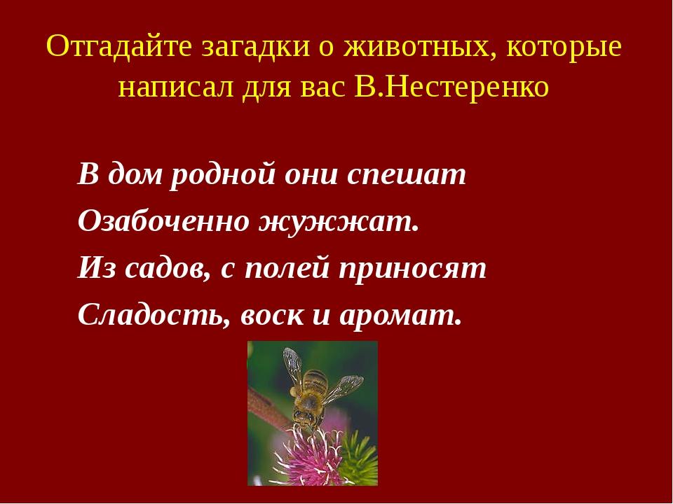 Отгадайте загадки о животных, которые написал для вас В.Нестеренко В дом род...