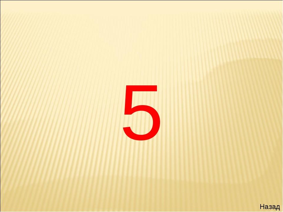 5 Назад