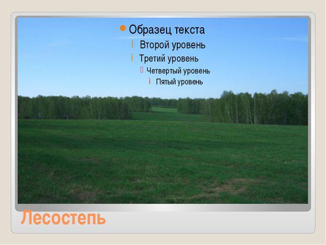 Лесостепь