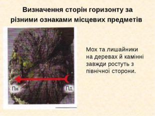 Визначення сторін горизонту за різними ознаками місцевих предметів Мох та ли