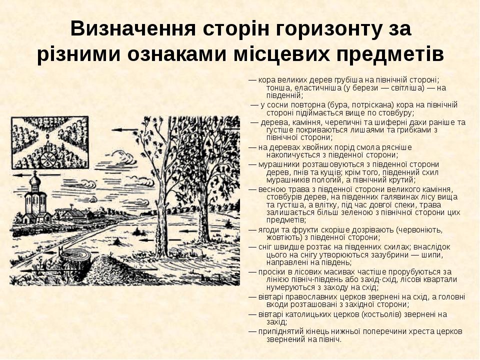 Визначення сторін горизонту за різними ознаками місцевих предметів — кора вел...
