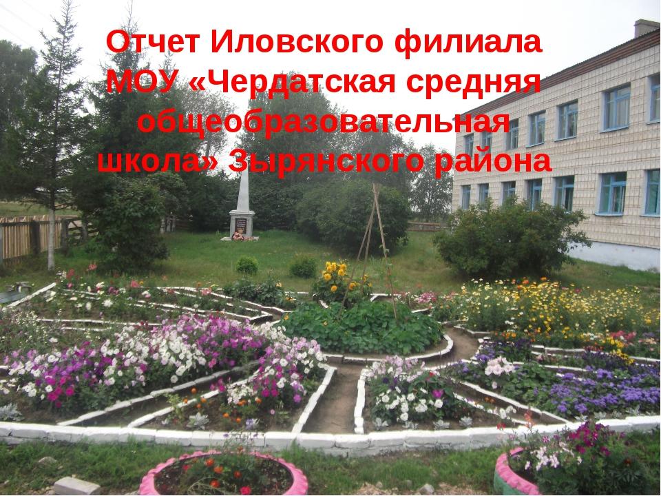Публичный отчет по итогам работы Иловского филиала МОУ «Чердатская средняя о...