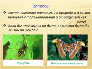 каково значение насекомых в природе и в жизни человека? (положительная и отр