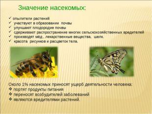 Значение насекомых: опылители растений участвуют в образовании почвы улучшают