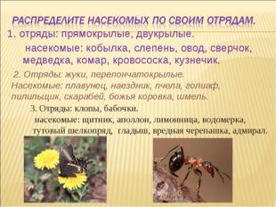 1. отряды: прямокрылые, двукрылые. насекомые: кобылка, слепень, овод, сверчок