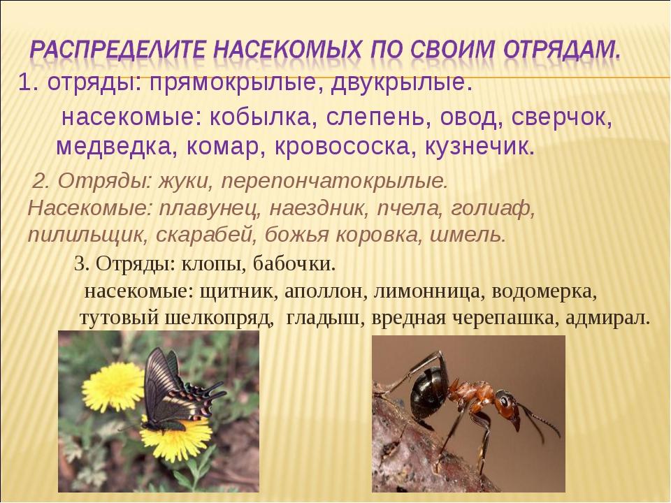 1. отряды: прямокрылые, двукрылые. насекомые: кобылка, слепень, овод, сверчок...