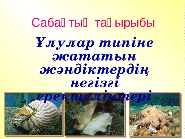 Сабақтың тақырыбы Ұлулар типіне жататын жәндіктердің негізгі ерекшеліктері