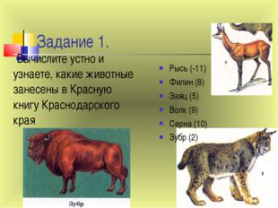 Задание 1. Рысь (-11) Филин (8) Заяц (5) Волк (9) Серна (10) Зубр (2) Вычисли