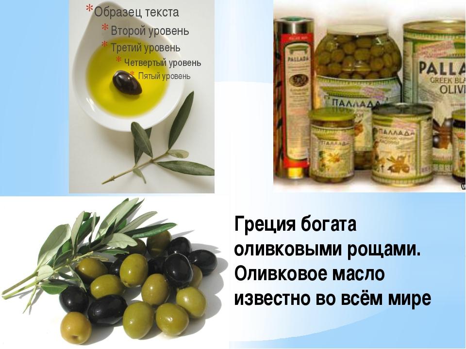 Греция богата оливковыми рощами. Оливковое масло известно во всём мире