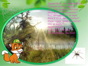 Здравствуй, лес, зеленый лес, Полный сказок и чудес! ты о чем шумишь листвою