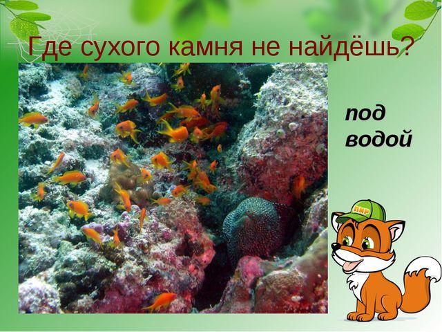 Где сухого камня не найдёшь? под водой