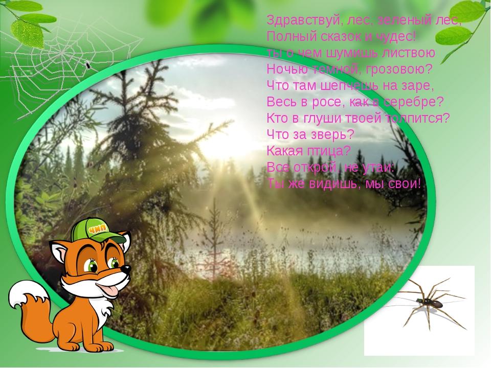 Здравствуй, лес, зеленый лес, Полный сказок и чудес! ты о чем шумишь листвою...