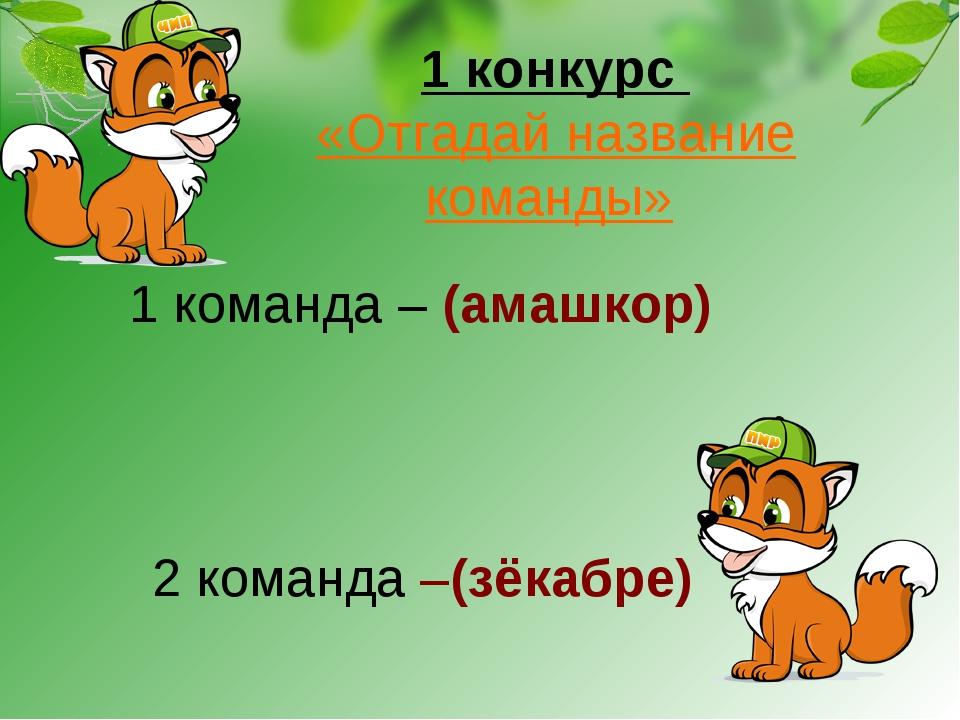 1 конкурс «Отгадай название команды» 1 команда – (амашкор) 2 команда –(зёкабре)