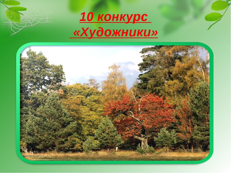 10 конкурс «Художники»