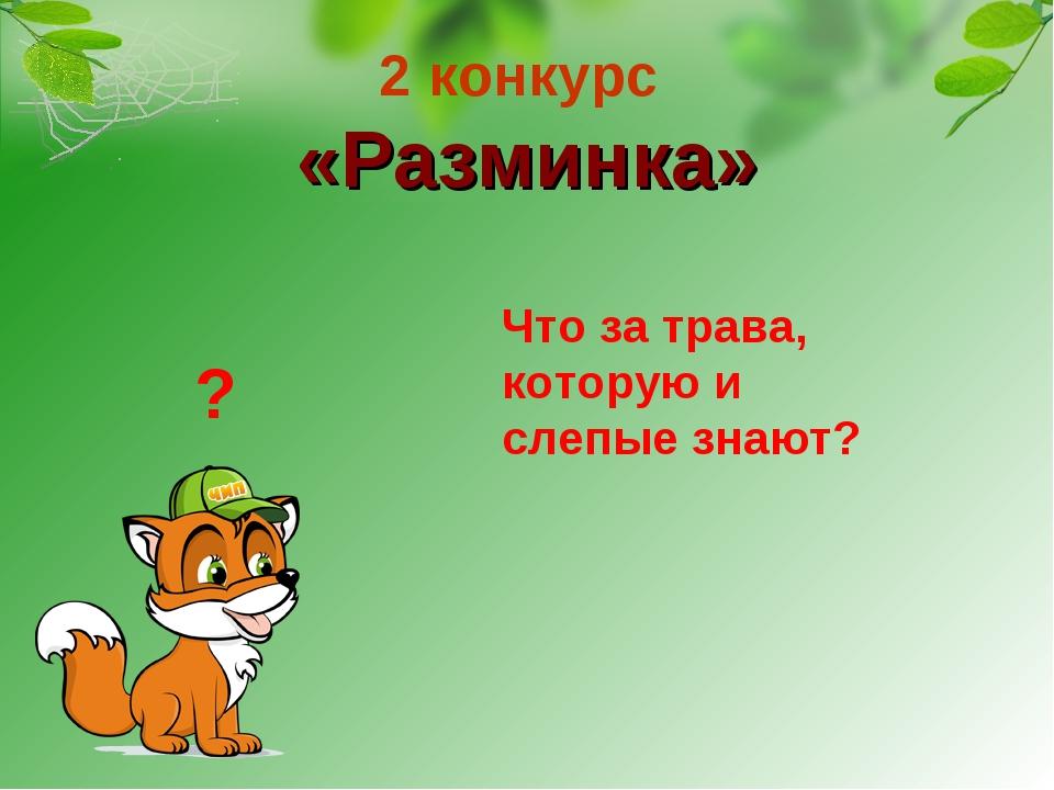 2 конкурс «Разминка» Что за трава, которую и слепые знают? ?