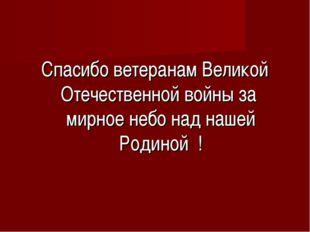 Спасибо ветеранам Великой Отечественной войны за мирное небо над нашей Родино