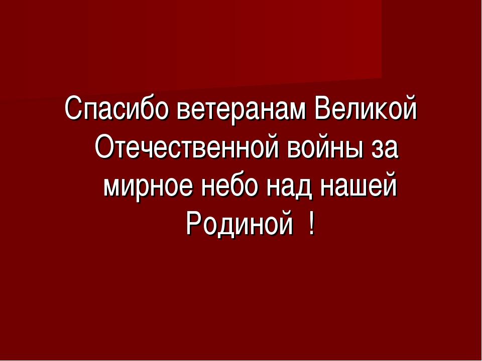 Спасибо ветеранам Великой Отечественной войны за мирное небо над нашей Родино...