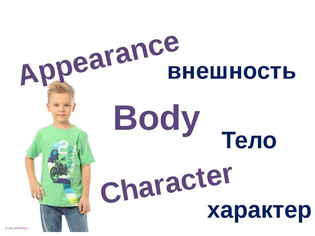 Appearance Character Body внешность Тело характер