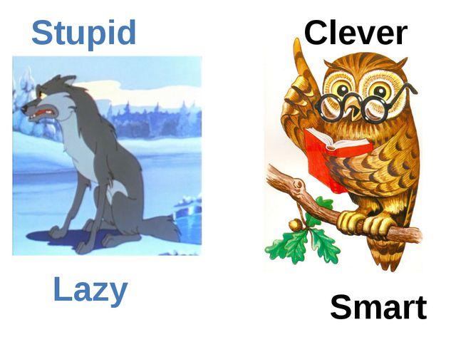 Clever Smart Stupid Lazy