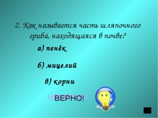 2. Как называется часть шляпочного гриба, находящаяся в почве? а) пенёк б) ми