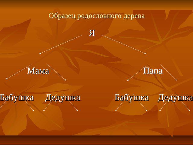 Образец родословного дерева Я Мама Папа Бабушка Дедушка Бабушка Дедушка