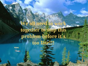 We all need to work together to stop this problem before it`s too late!!!